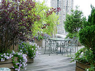 Beautiful rooftop garden terrace